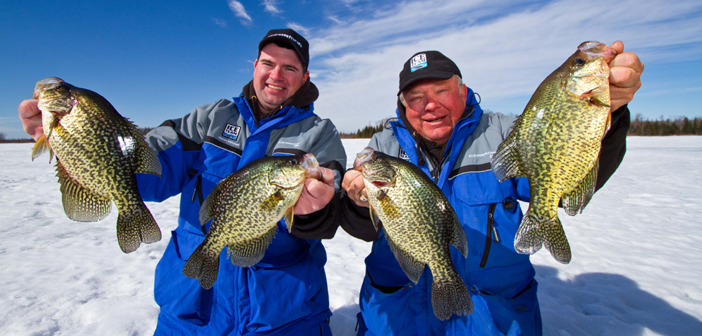 Contact Crappie
