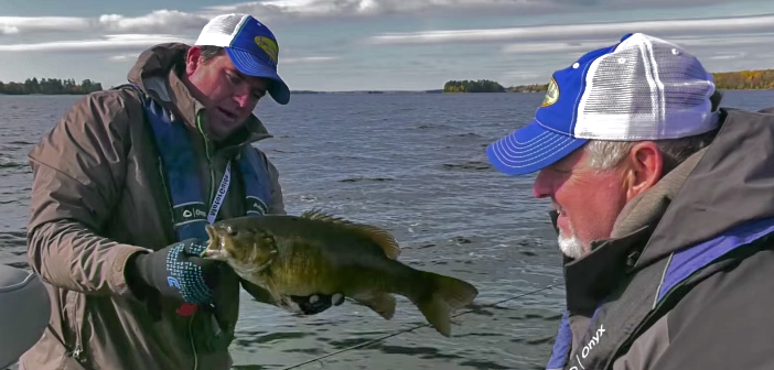 Incredible Fall Kabetogama Smallmouth Bass