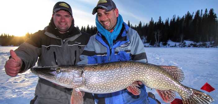 Giant Manitoba Pike on Tip-ups