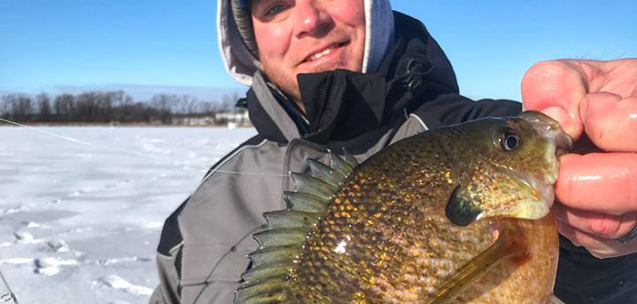 Ice Fishing Suspended Panfish on Early Ice