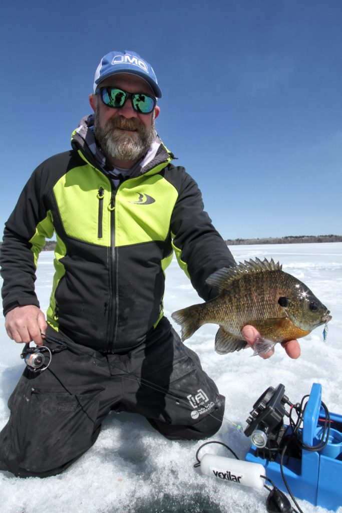 Trophy bluegill ice fishing