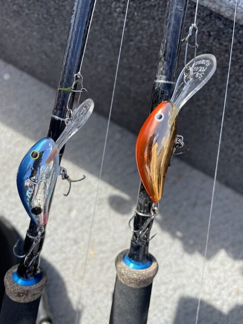 Salmo Crankbaits for Weed Walleye
